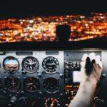 Flugstornierung und das Bearbeitungsentgelt